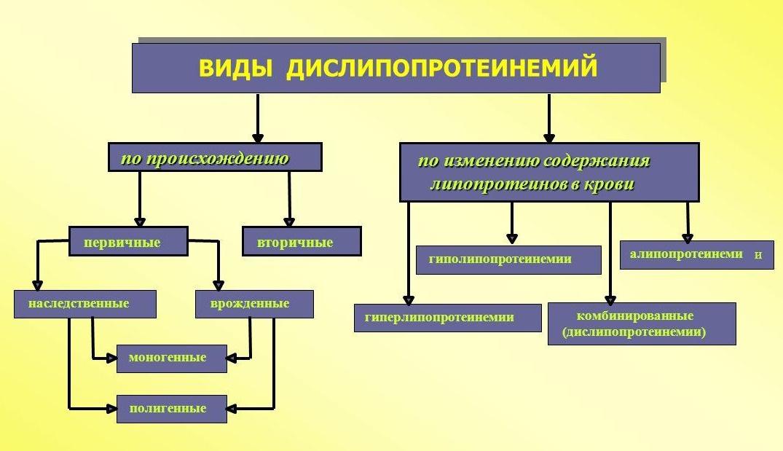Дислипопротеинемия