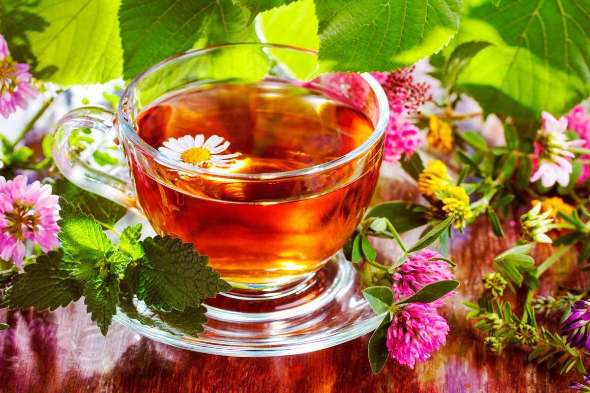 Чай из клевера, земляники и ромашки