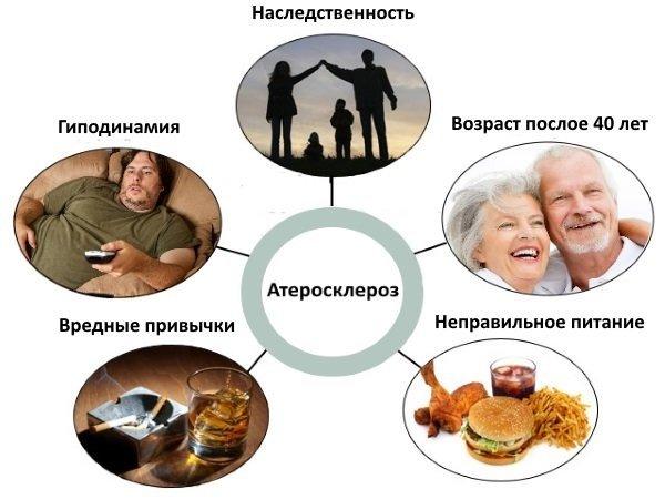 Факторы риска по развитию атеросклероза