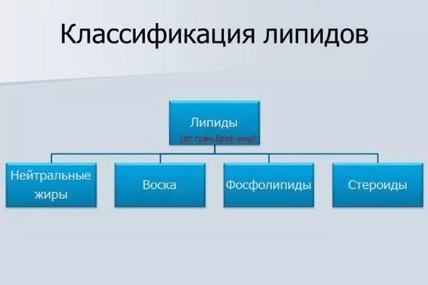 Общая классификация липидов