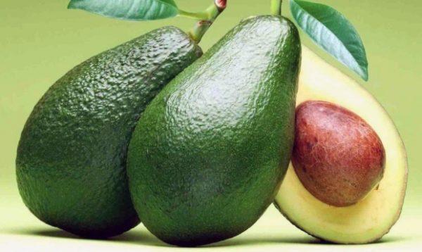 Спелый плод авокадо темно – зеленого оттенка