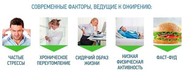 факторы, ведущие к ожирению