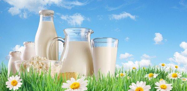 В молоке есть молекулы холестерина