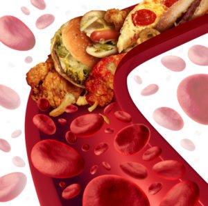 Состав холестерина в крови человека