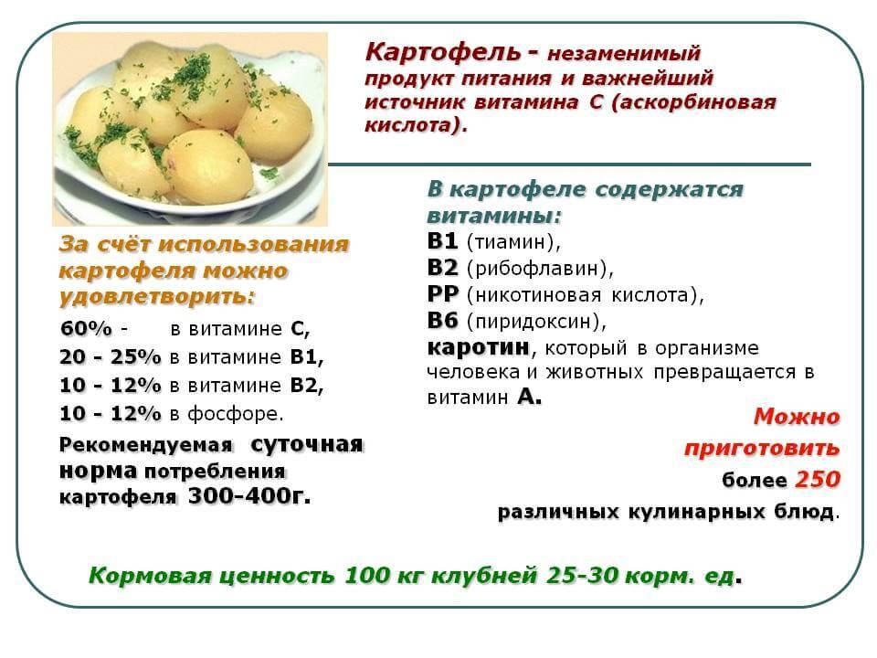 Состав картофеля